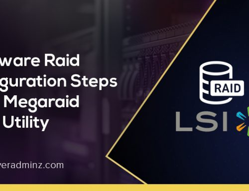 How to configure H/W RAID in LSI MegaRaid BIOS Config Utility ?